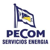 LOGO PECOM